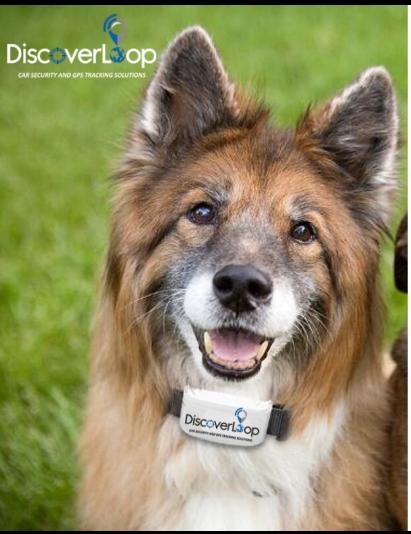 GPS за домашни любимци и стопански животни